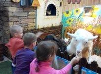 Посещение трогательного зоопарка